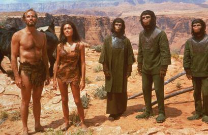 humanos-chimp-3