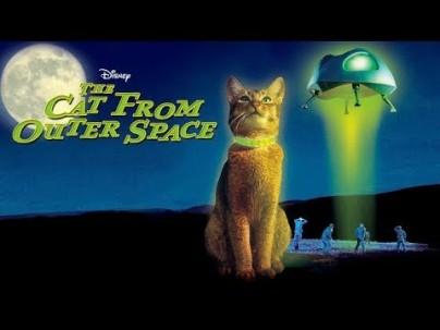 El Gato que vino del Espacio